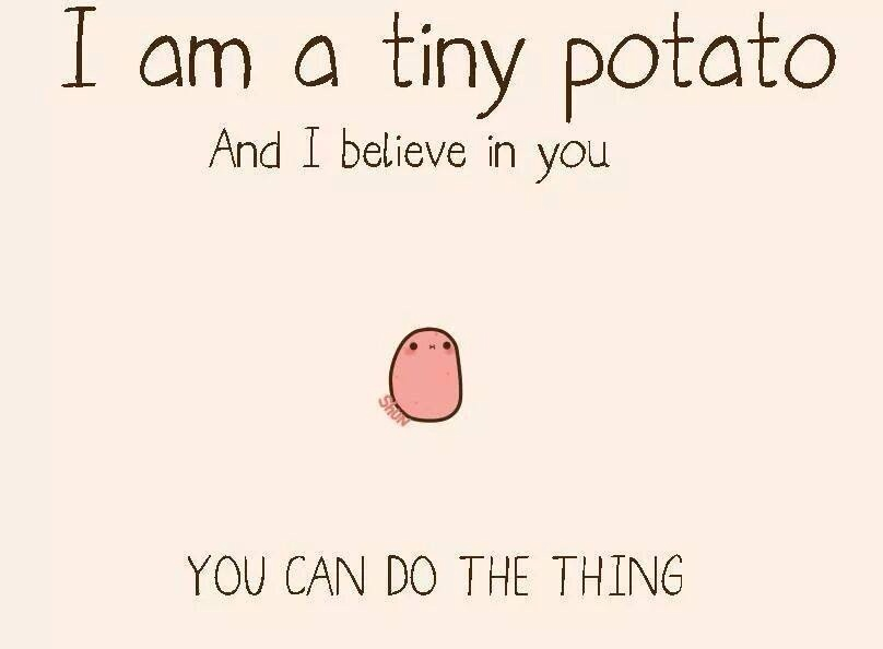 Image result for potato i believe in you